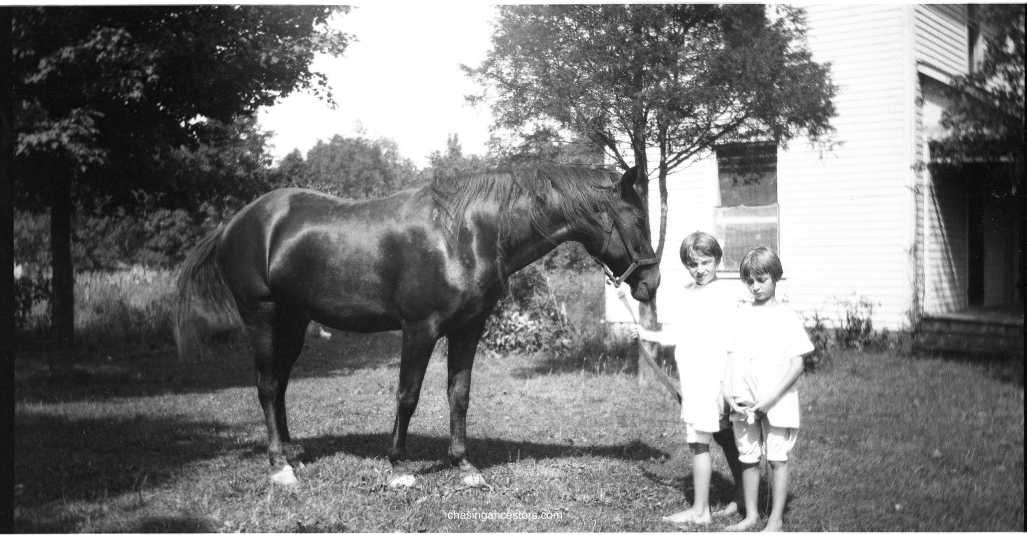 horseMargFran