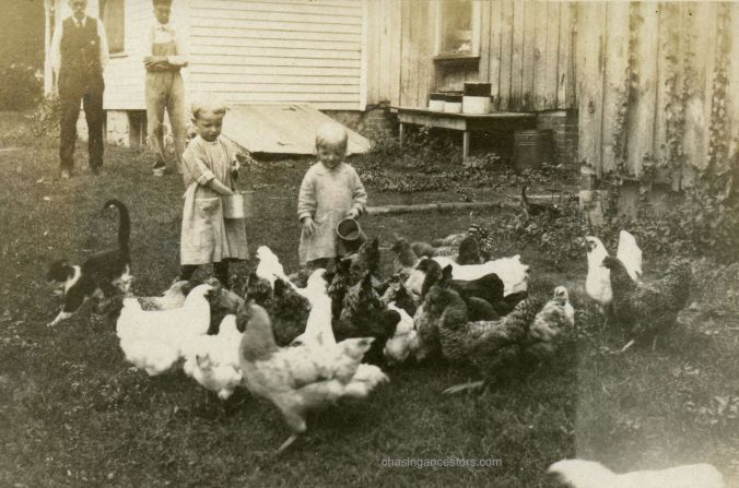 MargFranchickens